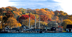 Mystic Overview (Bob Gundersen) Tags: bobgundersen gundersen robertgundersen nikon nikoncamera nikond600 d600 ct conn connecticut connecticutscenes country usa newengland fall foliage boat sailboat sail ship yacht water waterfront longislandsound lisound sea ocean port harbor river tree dock interesting image outside outdoor exterior old historical photo picture places park scenes shots shoreline scene shore coast flickr landscape sigma 500mm museum pier seaside skyline whale wharf sigma150500mmlens