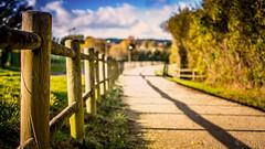 Voie verte  Bricquebec (jamy5050) Tags: bricquebec voie verte balade soleil chemin cotentin manche normandie
