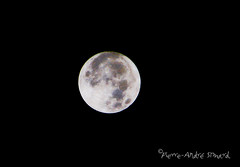 """Super Lune ... ( P-A) Tags: superlune 14nov2016astre astrologie infinie photodenuit photos simpa© """"nikonflickraward"""" science nature phénomène spectacle"""