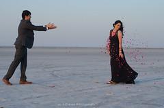 Flower Shower (JaiRathore) Tags: prewedding preweddingshoot rosepetals couple shoot sambhar