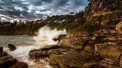 W H A L E    B E A C H (Tim_Matthews IG @T.M_Photos) Tags: seascape sunrise focus 2015 warriewood whalebeach littlecloud mtht timmatthewsphotography