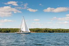 Sailing (JarkkoS) Tags: blue sea summer sky water sport espoo finland boat sailing boating fi d800 uusimaa suomenlahti 2470mmf28g