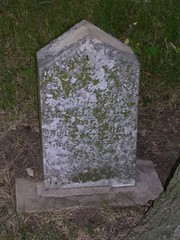 DSCN1397 (Brynn Thorssen) Tags: old trees green grave stone rural fence cows farm headstone country headstones iowa graves mormon gravestones dunlap crawfordcounty harrisoncounty obanion valleyviewcemetery corneliusdunham margrettascottdunham frediedunham jasperdunham iowapioneercemetery