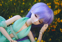 Axia (Sandricola Troleante) Tags: doll body hobby heat bjd custom dollfie dod collector balljointeddoll picis yosd minifee bjdoll dollsphotography dollhobby dailydoll bjdphotography
