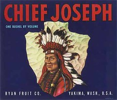 "Chief Joseph • <a style=""font-size:0.8em;"" href=""http://www.flickr.com/photos/136320455@N08/21445490816/"" target=""_blank"">View on Flickr</a>"