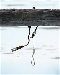 altona-5442-ps-w (pw-pix) Tags: wood wooden beam iron steel strap bolt hanger oldpier oldjetty rope noose water lavertoncreekmouth lavertoncreek dkgrantreserve altona westernsuburbs melbourne victoria australia peterwilliams pwpix wwwpwpixstudio pwpixstudio