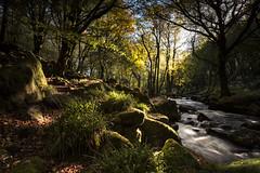 Light 'n' Shade (yadrad) Tags: river cornwall waterfalls fowey westcountry thesouthwest golitha riverfowey golithafalls rnbfowey