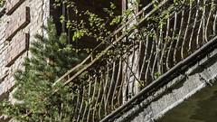 Beelitz-Heilsttten Oktober 2015 (Project-X-Team) Tags: deutschland iso200 decay urbanexploration f71 brandenburg urbex historisches verfall gelaender bauwerke beelitzheilsttten beelitz canoneos350ddigital 160mm projectxteam