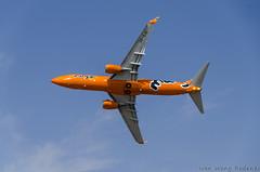 Mango B737 800 (6) (Indavar) Tags: plane airplane airshow chipmunk mustang albatros rand beech at6 radial an2 p51 l39 antonov dc4 dhc1 beech18 t28trojan b378