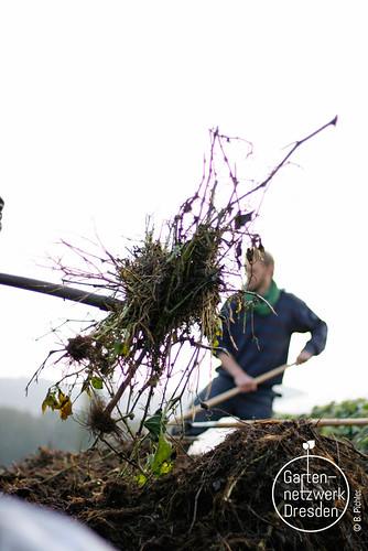kompostieren_36