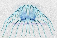 Blue Tentacles.  Exclusive Original stock Surreal and Abstract  Photo Art digital download. (sunnypicsoz.com-Geoff Childs.) Tags: blue white abstract art photography photos surrealism fineart surreal images fantasy onwhite surrealistic photoart exclusive digitalphotography digitallyenhanced hotelart digitallyaltered officedecor printready tenticales surrealdigitalart interiordesignerart interiordecoratorart photoforrmt115 surrealhotelart stockabstractart originalhotelart exclusiveinteriordesign exclusivehotelart designeroriginalphotoart abstracthotelart
