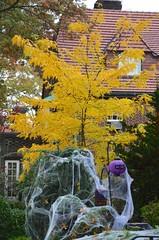 Autumn & Halloween (Joe Shlabotnik) Tags: 2015 october2015 foresthills autumn fall foresthillsgardens halloween afsdxvrzoomnikkor18105mmf3556ged faved