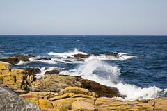 Coastline (Kingsley's Ministry) Tags: denmark dänemark danmark bornholm