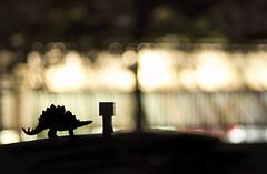 Going home. (Matt_Briston) Tags: silhouette dinosaur stegosaurus danbo