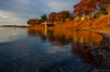 orange in morning light (paul noble photography) Tags: ocean morning november autumn orange fall water reflections golden nikon awesome maine newengland atlantic falmouth atlanticocean goldenhour vacationland noble mainecoast autumncolor cascobay fallinmaine orangeleaves newenglandcoast awesomeclouds newenglandfoliage 1224f4 falmouthmaine fallinnewengland tokinaatx1224 visitmaine 1224f4tokina nikond7000 falmouthtownlanding mainephotographers goldenhourlandscape paulnobleimages goldenhournikond7000 paulnoblephotography goldenhoursunrise mainething