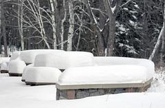 StoneSnowa (odinwallace) Tags: park winter snow state itasca