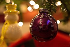 Christmas spirit (newbiephoto92) Tags: christmas pink tree glitter festive lights bauble