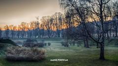 Misty twilight (malioli) Tags: park city sunset urban tree misty fog canon town twilight europe sundown dusk foggy croatia hrvatska karlovac placemstreet