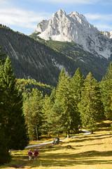 DSC_0041 (stacheltierchen) Tags: mittenwald lautersee alpen bavaria germany lake wettersteinspitze karwendel wandern wald see bergsee oktober autumn herbst morning nikon flickr