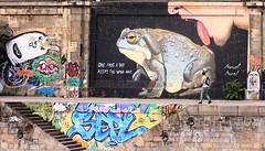 one frog a day (Marcus Rahm) Tags: streetart grafiti city stadt kanal donaukanal donau wien