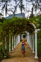 DSC_5432 (sergeysemendyaev) Tags: 2016 rio riodejaneiro brazil jardimbotanico botanicgarden     outdoor nature plants    green arc   beauty nikon