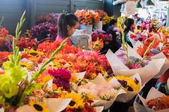 Flowers everywhere. (JordanCabiling) Tags: flowers publicmarket pikeplace seattle washington streetphotography fujifilm xt1