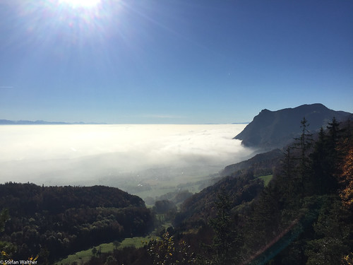 fog sea