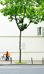 Paris and His Famous Yellow Raincoat (kirstiecat) Tags: paris bike bicycle child son mother motherhood parent velo tree arbre europe france chateaubriand street canon strangers