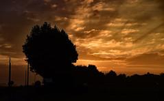 De la nuit  l' aube (o.penet) Tags: nuits aubes honfleur ciels matins early mornings normandie sunsets sky