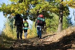 DSC_0297 (Pter_Szab) Tags: mtra matra hungary nature autumn colours mountains galyateto galyatet forest hiking nationalpark landscape