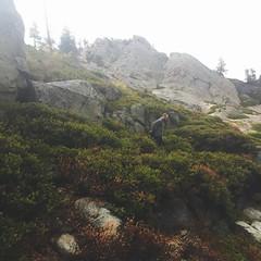 Descending In The Hail (Zee Jenkins) Tags: insidethecloud foggy fog hiker mountain trail hail rain laketahoe alpineridge tahoe hiking hike