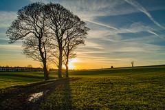 Billinge Golden Hour (ianbonnell) Tags: sunset landscape liverpool goldenhour merseyside