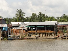 IMG_3352 (program monkey) Tags: vietnam mekong river delta cargo boat ben tre tra vinh coconuts