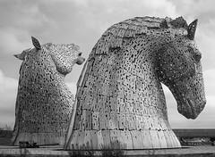 Kelpies Duke and Baron (mfmb_bentley) Tags: kelpies dukeandbaron canalhorses horsesculpture thehelix falkirk