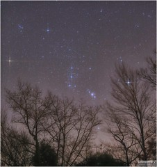 He's Back in the Evening Skies – Mighty Orion (Tom Wildoner) Tags: tomwildoner leisurelyscientistcom leisurelyscientist orion constellation betelgeuse rigel trees silhouette glow sky space stars astronomy astrophotography astronomer november 2016 weatherly pennsylvania nightsky night canon canon6d tripod orionnebula orionsbelt tiffen filter