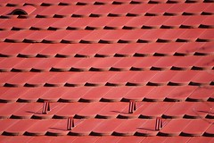 Roof tiles (Zsofia Nagy) Tags: 7daysofshooting week20 repetition geometrysunday red tiles roof