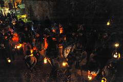 La-magia-del-bosco-di-notte-2016-42