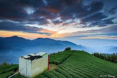 sun link sea sunset (Liao Joseph) Tags: sunrise sea sun link mountain tea trees mountains clouds