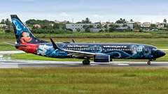 C-GWSZ (Terris Scott Photography) Tags: airplane aircraft jet boeing 737 westjet 738 aviation travel plane spotting nikon d750 nikkor 70300vr barbados canada disney