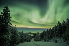 Finland (AntiAtlas) Tags: arcticcircle wintertime trees lake landscape suomi lappi finland green snow ukonjrvi winter arctic lapland northernlights auroraborealis aurora