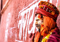 Sadu against wall, Kathmandu (Natalie.Imagegallery) Tags: nepal red orange white colour face yellow wall religious photography photo worship asia gallery dress image painted traditional kathmandu hindu holyman sadu travelphotography natalietonkingimagegallery
