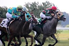 37/52 Fairy Tales: Kentucky Downs Race 1 (Bella Lisa) Tags: horse gambling race kentucky stretch jockeys horseracing betting turf thoroughbred horserace greatcross franklinkentucky kentuckydowns spoonfulofsugar florentgeroux brianjosephhernandez marcelinopedroza fabulousmissbea
