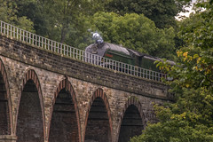 Union of South Africa Steam Train, Midlothian (Colin Myers Photography) Tags: africa old colin train photography scotland south union scottish steam locomotive steamtrain myers sweeping midlothian steamlocomotive steamloco unionofsouthafrica viadcut newbattle newbattleviaduct colinmyersphotography