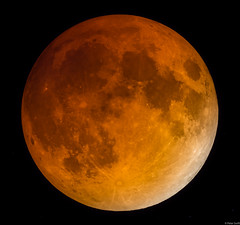 *Howls* (wootnessy) Tags: red moon eclipse blood bloodmoon beginnerdigitalphotographychallengewinner