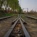 Track split