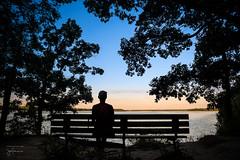 Untitled (josefrancisco.salgado) Tags: 2470mmf28g d5 illinois illinoisriver nikkor nikon starvedrockstatepark usa unitedstatesofamerica utica banco bench silhouette silueta lasallecounty us