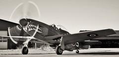 P-51d Mustang (Jonas.W.) Tags: mustang p51d samsungnx300