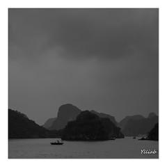 Le Pêcheur - Baie d' Halong - Vietnam