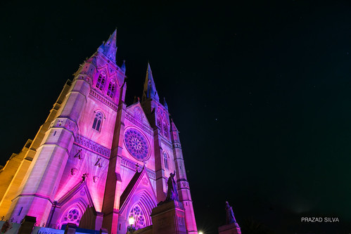St Mary's Cathedral - Christmas Lights