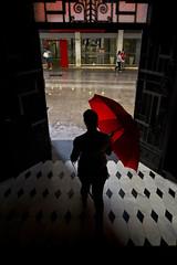 CALOR CLIMA CHUVA (Weber Sian) Tags: umbrella chuva umbrela calor clima sombrinha
